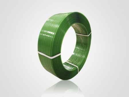 福建绿色打包带价格